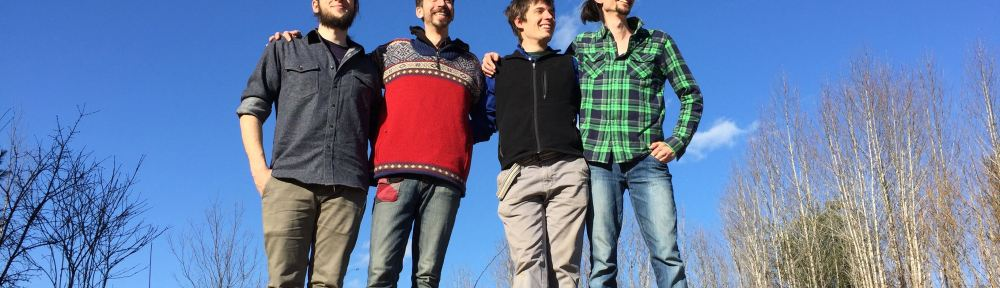 Contradance band Cloud Ten performs high-energy music.